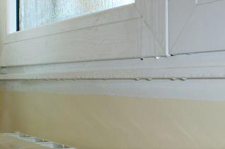 Cómo evitar la aparición de moho y humedad en las ventanas