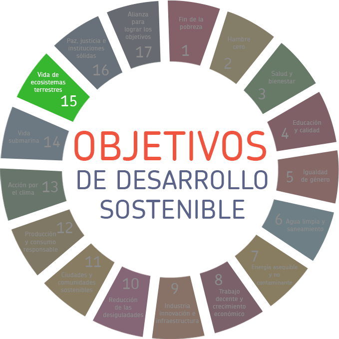 sostenibilidad, Sostenibilidad